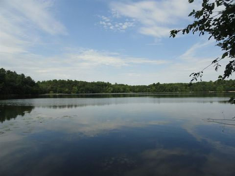 Pine Tree Trl Lot 1, Amherst Junction, WI 54407