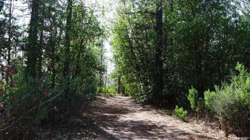 1 Spring Garden Rd Foresthill, CA 95631