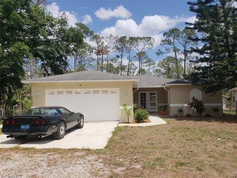 Homes For Sale Near Big Cypress Elementary School Naples Fl Real