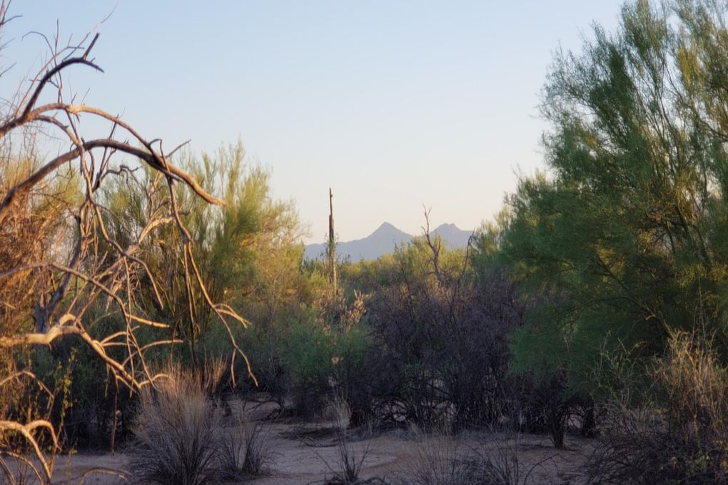 163XX E Lone Mountain Rd Lot 168 Scottsdale, AZ 85262