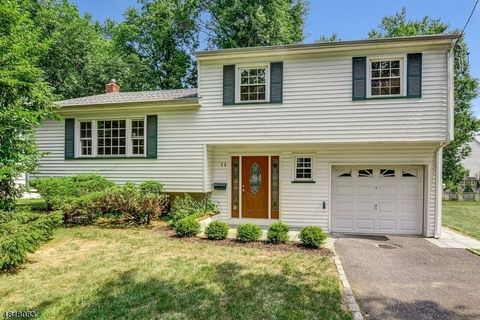 11 Ashwood Dr, Livingston, NJ 07039
