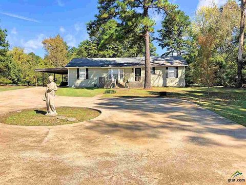 Photo of 25 County Road 2735, Pittsburg, TX 75686
