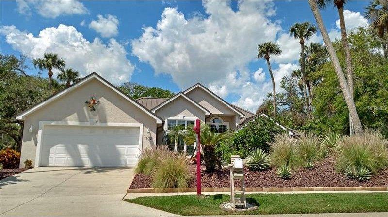 702 Saxon Palm Ct, New Smyrna Beach, FL 32169