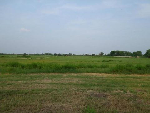 4414 County Road 2289, Odem, TX 78370