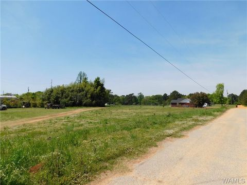 Photo of S Highway 69, Moundville, AL 35474