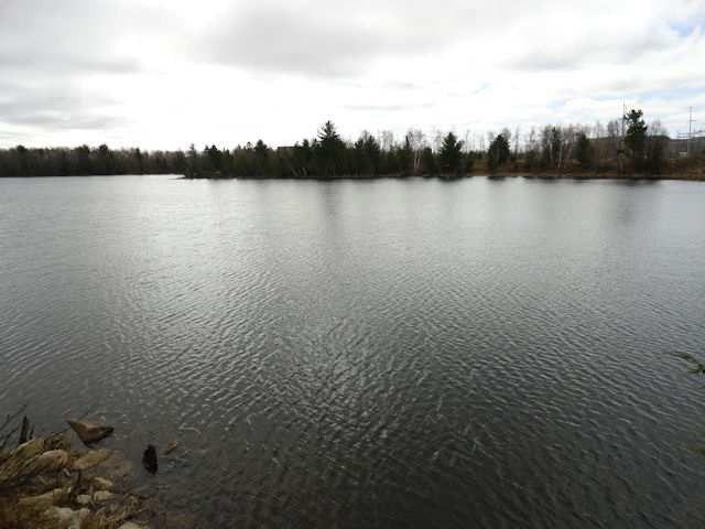 40 Acres Perch Lake Rd, Republic, MI 49879