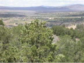 Sandia Cyn Lot 16 Arroyo Hondo, NM 87513