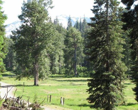 Photo of 16179 Coffee Creek Rd, Coffee Creek, CA 96091