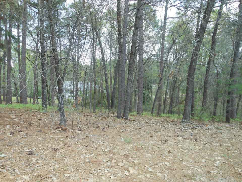 Homes for Sale near Sandavis Rd, Southern Pines, NC ...