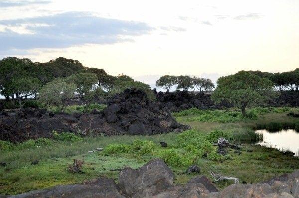 69-1081 Kolea Kai Cir, Waikoloa, HI 96738