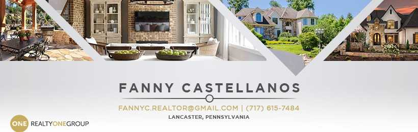 Beautiful Chimney Sweep Lancaster Pa