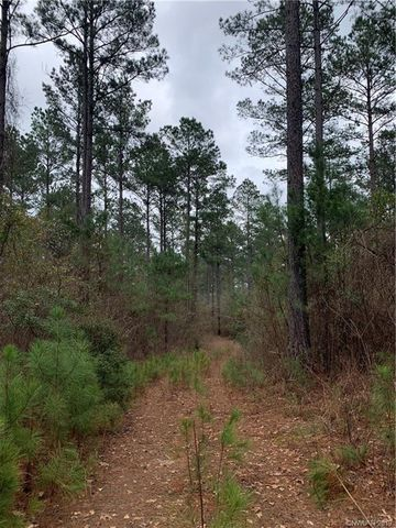 Photo of Pruitt Rd, Minden, LA 71055
