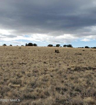 30347001-N Alpine Rnch, Flagstaff, AZ 86004