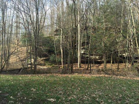 1541 Horseshoe Creek Rd, Victor, WV 25938