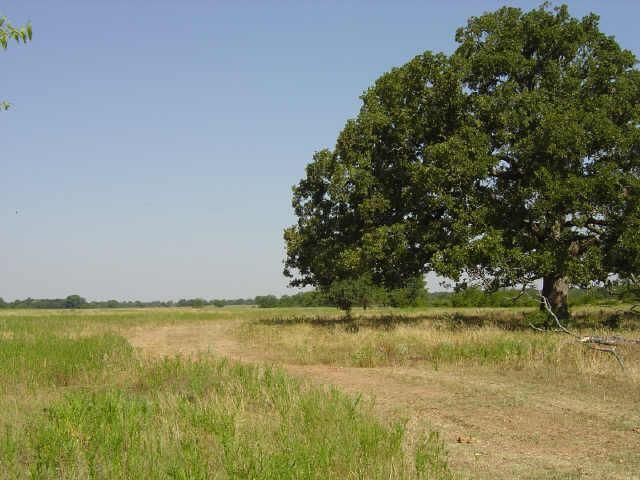 N Fm 69 Sulphur Bluff Tx 75481 Land For Sale And Real