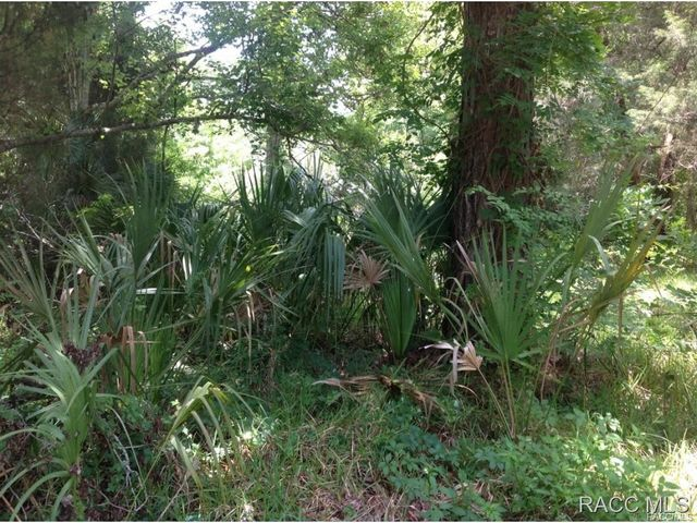 65th st yankeetown fl 34498 land for sale and real