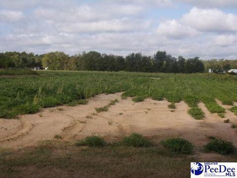 hartsville sc land for sale real estate
