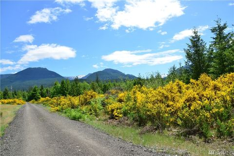 Photo of Eagle Peak Dr, Packwood, WA 98361