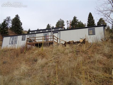 9125 Canyon Dr, Woodland Park, CO 80863