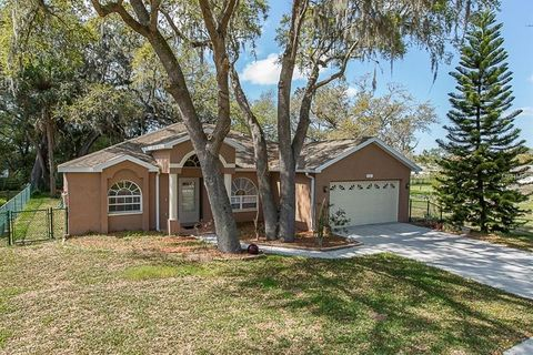 Genial 3141 Shadow Oaks Dr, Holiday, FL 34690. Single Family Home