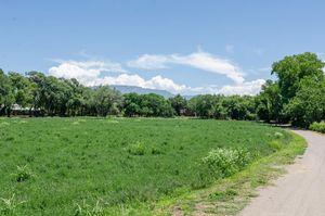 7200 Rio Grande Blvd Nw Los Ranchos Nm 87107 Realtor Com 174