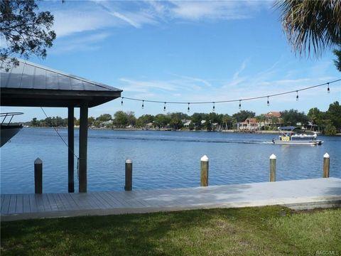 402 N Venturi Ave S Island Dr, Homosassa, FL 34429