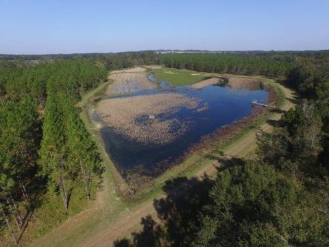 130 76 Acres Grooverville Rd, Boston, GA 31626
