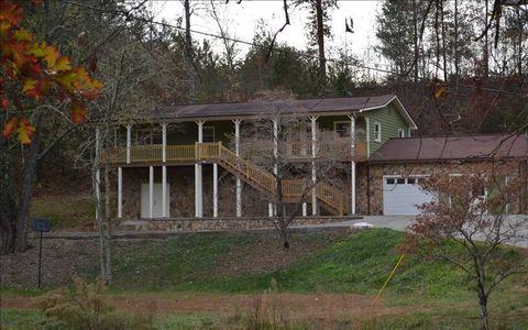 668 Greenhouse Rd, Blue Ridge, GA 30513