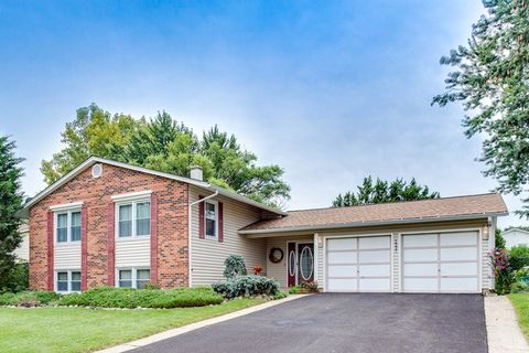 1537 California St, Elk Grove Village, IL 60007