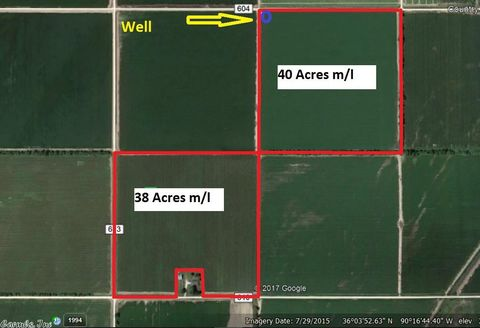 610 And 604 Rd, Cardwell, MO 63829