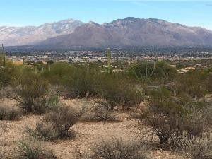 5400 N Park Ridge Pl, Tucson, AZ 85743