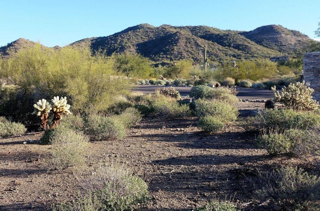 8434 E Regina Cir Lot 2, Mesa, AZ 85207