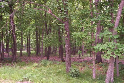 786 Rollingwood Pl, Varna, IL 61375
