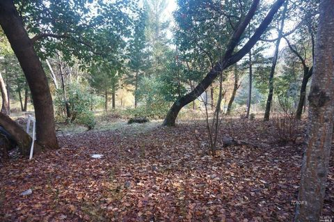 Photo of 171 Conner Creek Rd, CA 96048