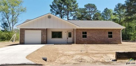 Photo of 233 Briar Bend Dr, Rusk, TX 75785