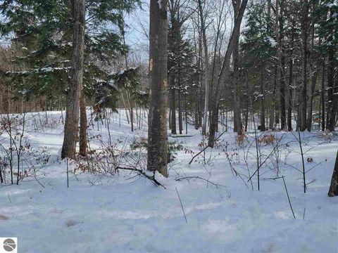 Photo of 7582 Peaceful Valley Rd, Williamsburg, MI 49690