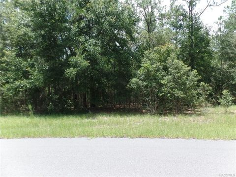 Citrus Springs, FL Recently Sold Homes - realtor com®