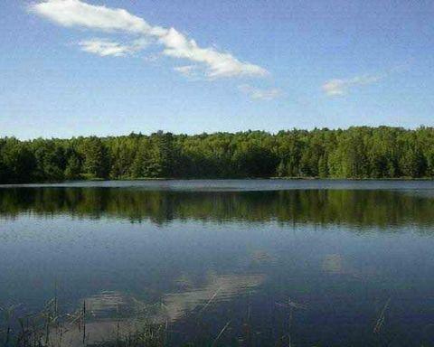 Estes Lake Rd Lot F, Sidnaw, MI 49961