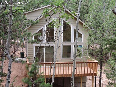 33 Tecumseh Ln, Woodland Park, CO 80863