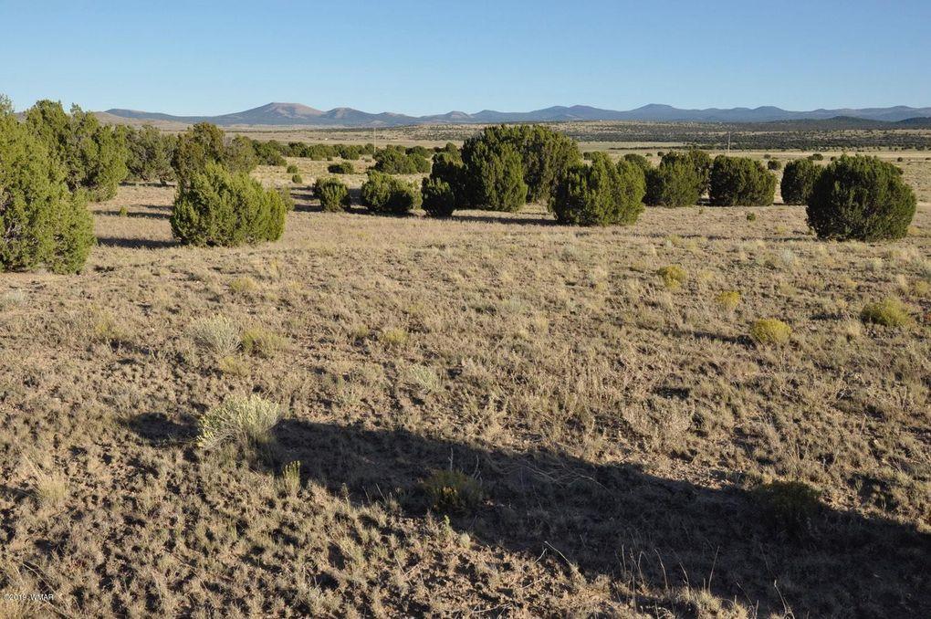 185borc Highway 61 Concho Valley AZ 85924