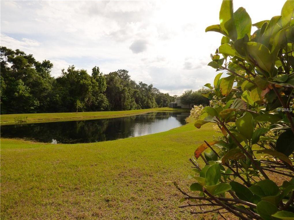15961 Fishhawk View Dr, Lithia, FL 33547