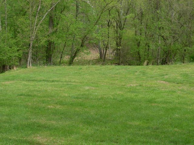 singles in green sulphur springs Green grass is here,  we would recommend mountain homes 4 horses to anyone rex & kay read more email newsletter subscribe to our free weekly newsletter.