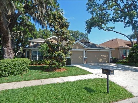 15732 Starling Water Dr, Lithia, FL 33547