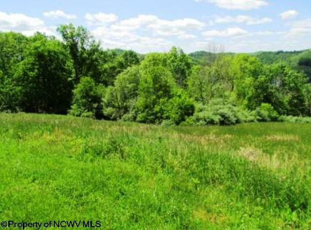 Lakeview Ter Lot 43 Horner, WV 26372