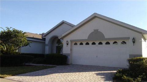 6032 Falconbridge Pl, Mount Dora, FL 32757