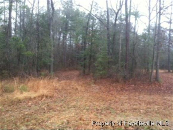 Briggs Rd Lot 13, Cameron, NC 28326 - Land For Sale and ...