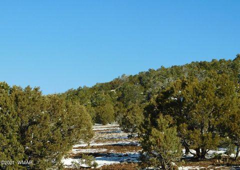 Photo of 681 County Road 3144, Vernon, AZ 85940