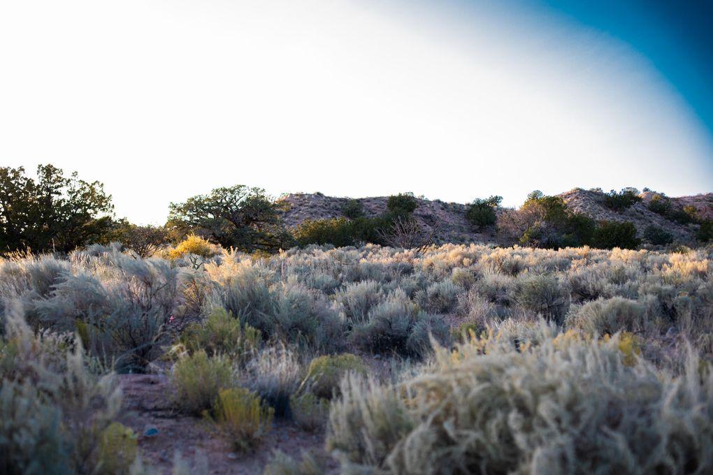 2213 Venada Rd NE Rio Rancho, NM 87144