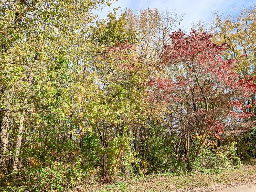 526 Knollview Dr Evansville, IN 47711