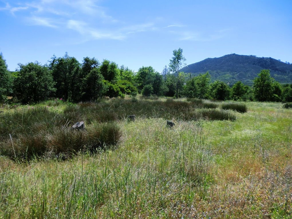 18309 Patterson Ranch Rd Montgomery Creek, CA 96065